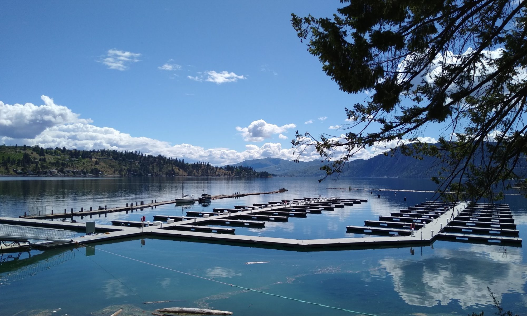Lake Chelan Cove Marina
